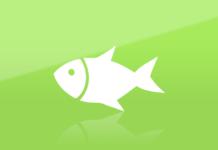 Sveriges minsta fisk - mått och storlek